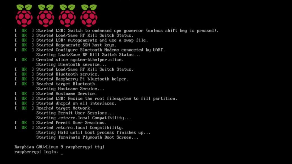 Raspbian Lite Terminal Login Screen